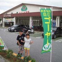 GW宮古島の旅with怪獣 その4
