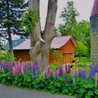 六月の庭断片