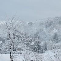 雪が晴れても忙しい