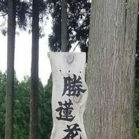 勝蓮花の滝
