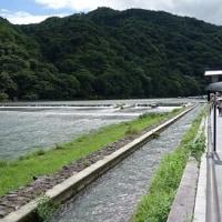 京都・嵐山・葛野大堰(かどのおおい)