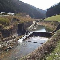 春の松阪ワンパラ旅行♪ 後編