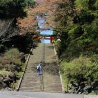 念願の霧島神宮へ