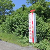 ■(1) ハルカヤマ藝術要塞2017 FINAL CUT (6月11~18日、小樽)