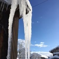 積雪150cm になりました