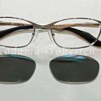 ほんとうのサングラス