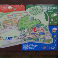 道の駅うつのみや、ろまんちっく村に調査に行ってきました。