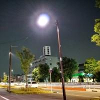 調布・保谷線の道路工事 (38)