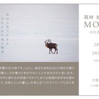 高林紗弥香写真展 MOMENT