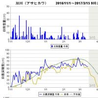 春よ来い!積雪55cm(旭川)