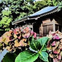 『秋深し』 高来神社