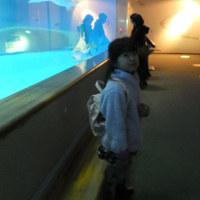 島根海洋館アクアス