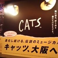 CATS 観ました(*≧∀≦*)