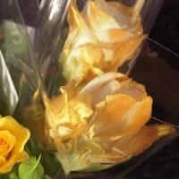 「成功」に近づく花の色