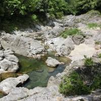 今日の鮎滝_170523