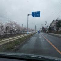 晴耕雨読日記 平成29年4月23日 日曜日