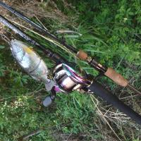 昨日の釣行の感想