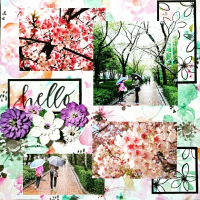 hello春