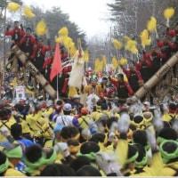 諏訪大社の御柱祭、巨木8本の「山出し」で開幕