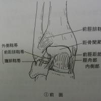足首の腫れは治癒反射です。