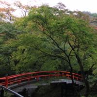 伊香保温泉 河鹿(かじか)橋の紅葉2016
