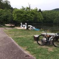 モンデウス〜美女高原〜岩滝52キロ。