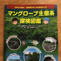 「マングローブ生態系探検図鑑」偕成社より6月27日発売します