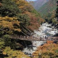 祖野のかずら橋 ( 四国 )