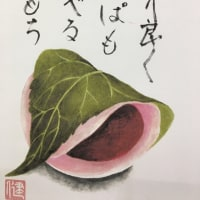 絵手紙教室『桜もち・お団子』を描く