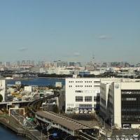 道志に比べちゃなんですが、寒かった東京