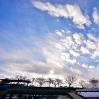 冬空の下の都市農業公園