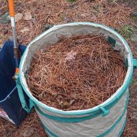 落ち葉集め堆肥作り3日目。
