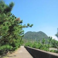 三浦梅園と姫島 その6 『豊後跡考』(33歳)