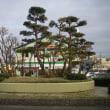 巨大な盆栽