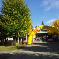 宇都宮ハーフマラソン(試練の夏、飛躍の秋)