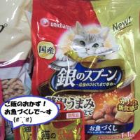 昨日はニャンニャンデー(^○^)美味ちそうでちゅ=^_^=