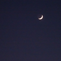 三日月に寄り添う金星