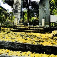 『今日は』 開戦記念日