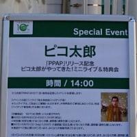 ピコ太郎のライブ