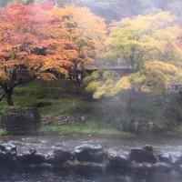 秋の休館日