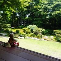 滋賀県坂本の「元里坊 旧竹林院」。国指定名勝庭園を眺めつつ味わうお茶とお菓子