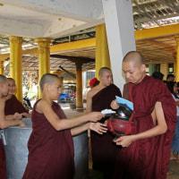 ミヤンマー チャッカワイン僧院 6