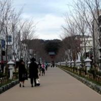 スケッチ散歩(2)~鎌倉石窯ガーデンテラス