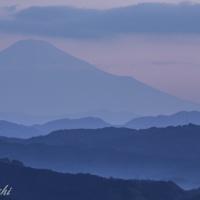 金谷からの富士山