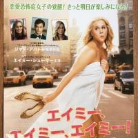 理屈なしで楽しめるアメリカ映画「ナイスガイズ!」「エイミー,エイミー,エイミー!」を観る~早稲田松竹