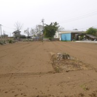 念願の新農地