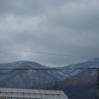 里にも雪が降りました
