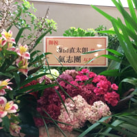 森山直太朗 15周年ツアー (中野サンプラザ)
