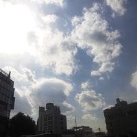 今日は日向は暖かい