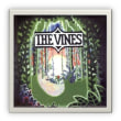 The Vines/Highly Evolved (LP)